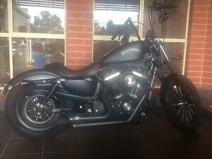 Harley Davidson iron 883 Payneham Norwood Area Preview