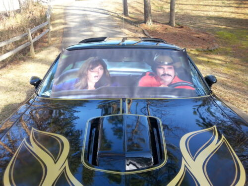 Smokey &  Bandit  Windshield  Sunshade Banner 1977 Trans am SE !
