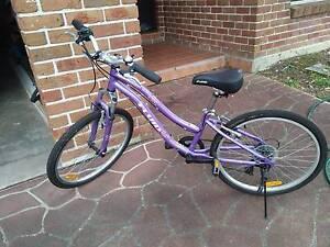 "Fluid Misty 24"" girls bike - 7 speed shimano, purple Blaxland Blue Mountains Preview"
