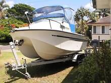 Supercat by Alf Stessl - Bar Jumper Currumbin Waters Gold Coast South Preview