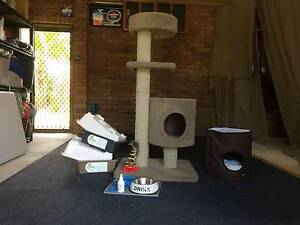 Catpole, Litter Trays and other Accessories Benowa Gold Coast City Preview