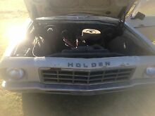 1975 Holden Ute Main Creek Dungog Area Preview