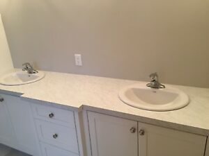 Brand new sink, faucets and counter