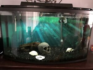44 Gallon Bow Front Fish tank with stand ect