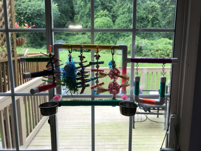 Window Bird Play Gym Stand with swing, bowls, and 2 Toys: Birds Love Them!