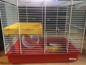 Cage à hamster, nourriture, jouets et bien plus