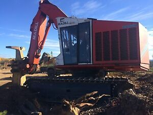 Feller Buncher for sale