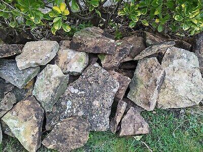 Sandstone rocks bulk lot. Collection from PE2.