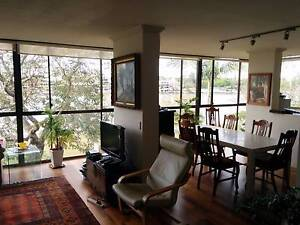 Temporary Room Available - New Farm - 1 month New Farm Brisbane North East Preview