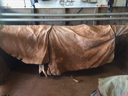Horse rugs for sale Ballina Ballina Area Preview