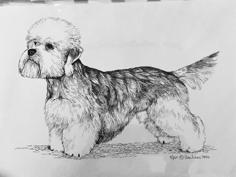 Dandie Dinmont Terrier Ltd Edition 21/500 By Van Loan 11x17