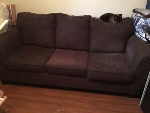 Pull Out Couch (Cat not included)