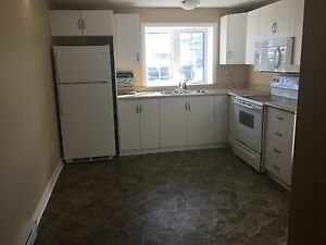 2 Bedroom Apartment for Rent in CBS