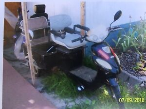 Electric 3 Wheel mobility cart