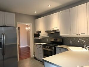 1 bed apartment in Newly Renovated House - Hamilton Lansdale