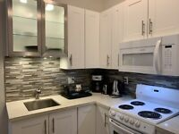 Furnished 1 bed 1 bath apartment, Vancouver, 15 mins to downtown