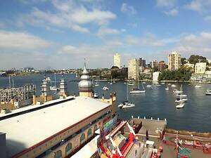 Waterfront Shared Office for rent Milsons Point North Sydney Area Preview