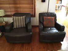 Aero Swivel Chairs - Italian Leather - Plush Furniture North Strathfield Canada Bay Area Preview