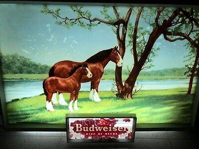 Vintage 1950's ? Budweiser Beer Clydesdales Horses Lighted Metal Sign WORKS