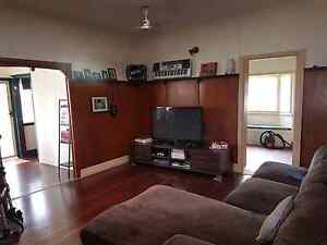 Room for rent Pacific Paradise Maroochydore Area Preview