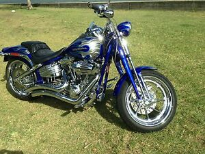 Harley Davidson Softail screamin  eagle CVO Softail springer FXSTSSE Scarborough Redcliffe Area Preview