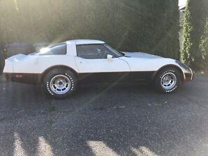 1981 Corvette project