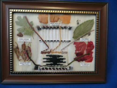 Navajo Rug Weavers Dye Chart Framed w/Dried Plants Dyed Wool In English & Navajo