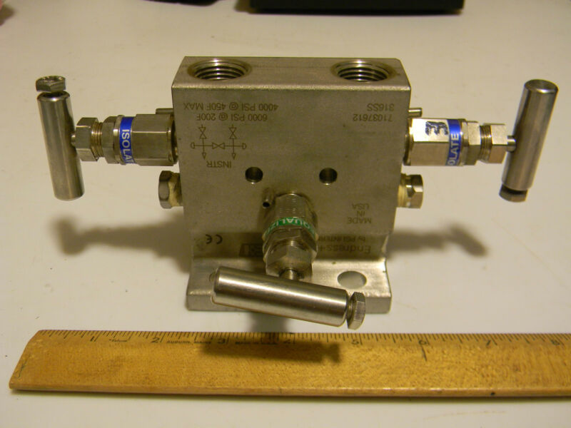 Endress+Hauser 6,000 psi control mixing valve 316SS Excellent