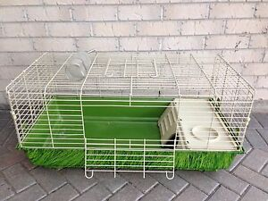 Rabbit Cage/Hutch by National Geographic