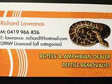 Reptile Dealer /  Keeper Transfers Iluka Joondalup Area Preview