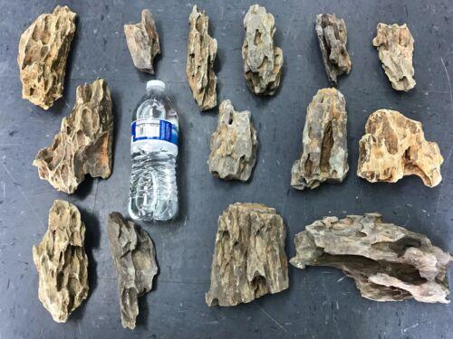 5 LBS Ohko Dragon Stone Aquascape Rock ADA Aquarium Fish Plant Shrimp Driftwood