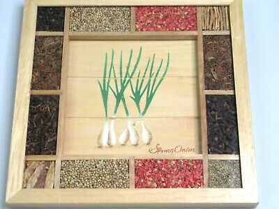 Framed Natural Seeds & Herbs Spring Onion Wooden Wall Art Farm House By Sixtrees