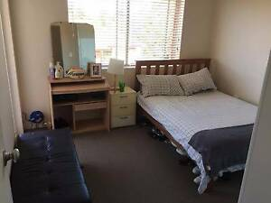 Short term accommodation Coogee Coogee Eastern Suburbs Preview
