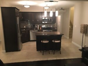 2 Bedroom basement suite available July 1st