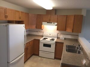 Large 2 Bedroom Condo- water and heat included