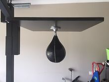 Boxing stand Fletcher Newcastle Area Preview
