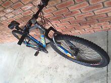 Mens mountain (MTB) bike Launceston 7250 Launceston Area Preview