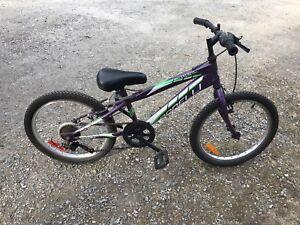 Vélo bonelli file