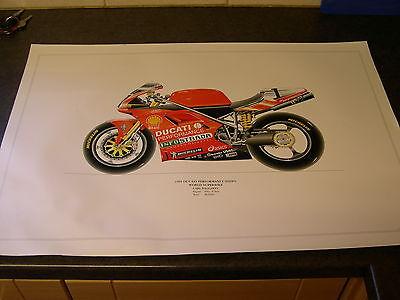 Ducati 996SPS WORLD SUPERBIKE (carl foggarty) posters