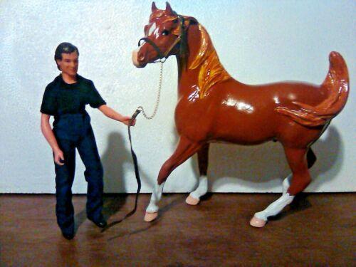CM Breyer Traditional Champion Arabian Stallion