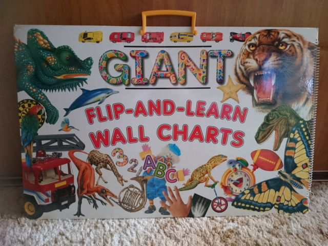 Giant Flip And Learn Wall Charts Children S Books