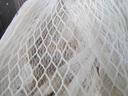Bird And Hail Netting Wamuran Caboolture Area Preview