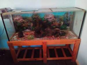 4foot fish tank Toukley Wyong Area Preview