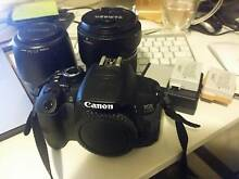 Canon 650d + Tamron 28-75mm + Canon 80-200mm Ashfield Ashfield Area Preview
