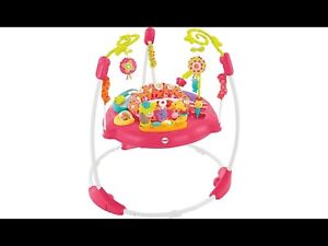 Fisher-Price Jumperoo $75