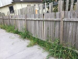 Fence for sale- free - pickup Colyton Penrith Area Preview