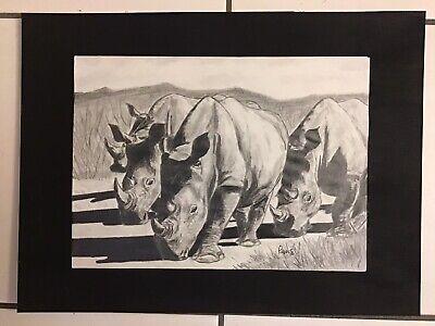 Pencil Sketch of a Crash of Rhinos