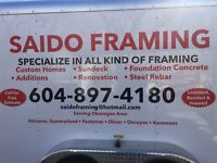 Saido framing
