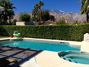 Palm Springs Pool House