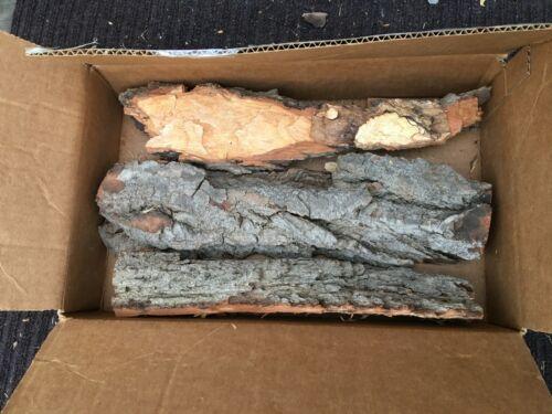 Eastern Cottonwood Bark - Lot 7